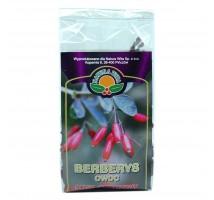 Berberys owoc - Natura Wita