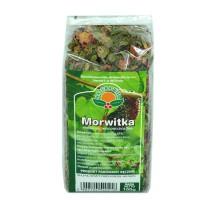 Morwitka - Natura Wita