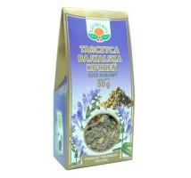 Tarczyca Bajkalska - Natura Wita
